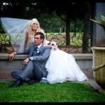 Holroyd Gardens Weddign Ceremony Venue